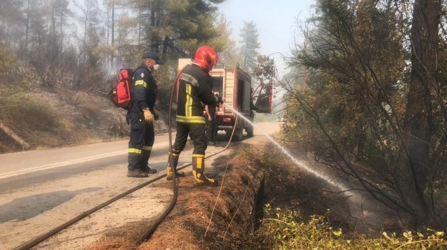 Українські рятувальники ліквідують лісові пожежі в Греції