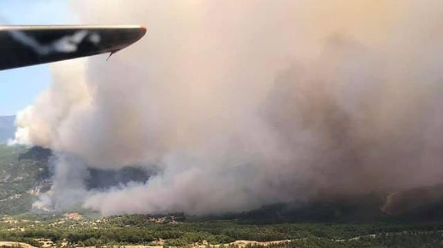 Українські рятувальникиліквідують лісові пожежі в Туреччині