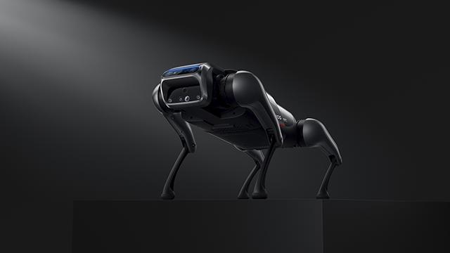 робот-собака Xiaomi