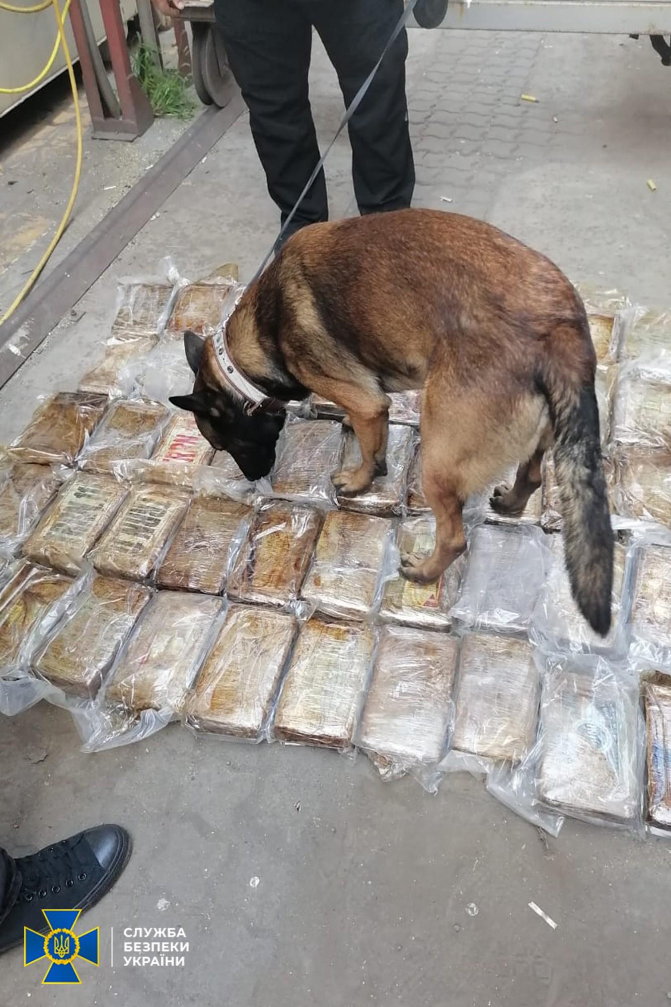 СБУ зупинила контрабанду наркотиків найбільшого злочинного угруповання – ФОТО