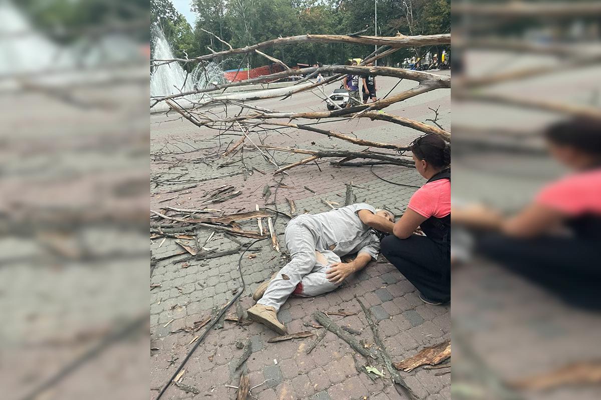 Новини Дніпра: на чоловіка впало сухе дерево і зламало йому обидві ноги (ФОТО, ВІДЕО)