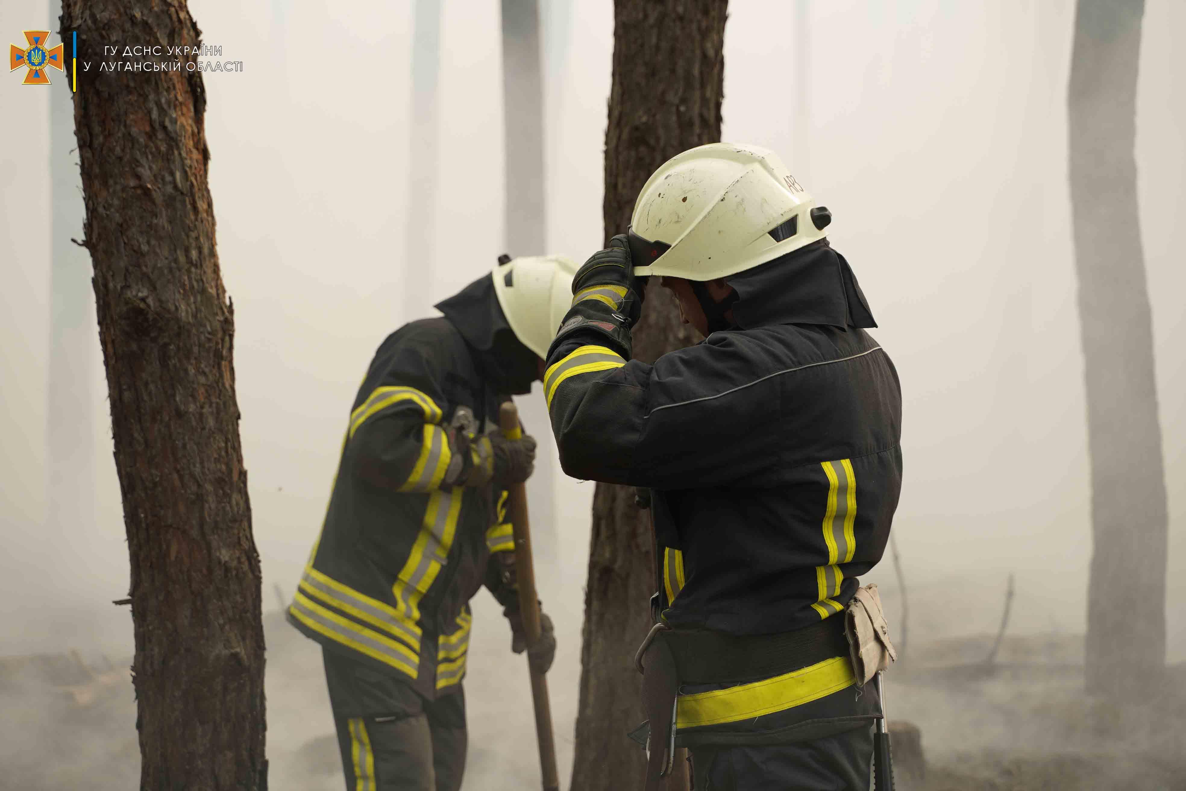 Нова лісова пожежа спалахнула в Луганській області