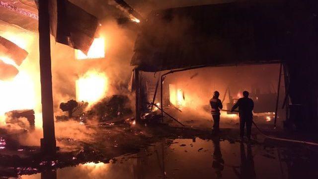 Згоріли цех та корівник, загинула людина: на Закарпатті сталася масштабна пожежа