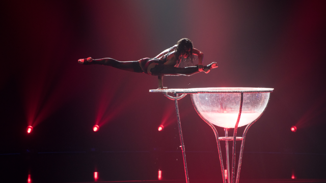 Це так сексуально! Гімнастка Цирку дю Солей виступила на шоу Україна має талант